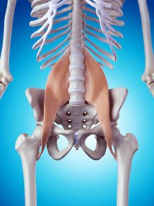 Psoas illustration